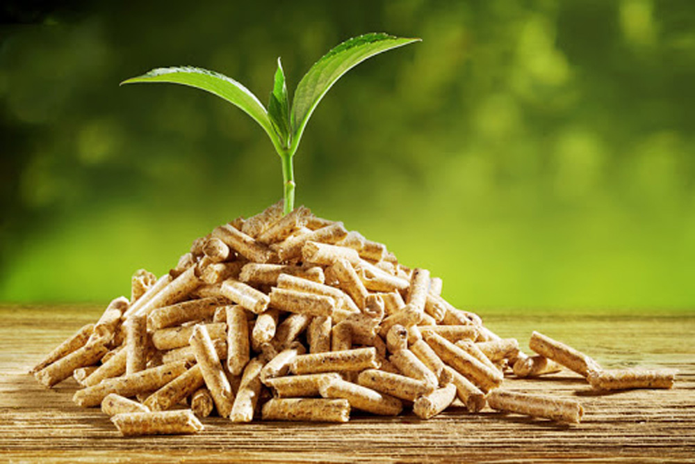 Biomass dryers manufacturers